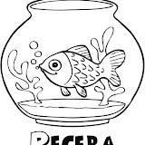 Pecera_1_g.jpg