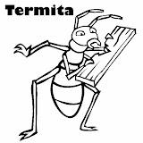 wid1kdazgg0bxomizinwpf3y_Termite.jpg