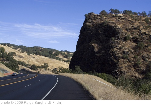 'California Redwood Road Trip' photo (c) 2009, Paige Burghardt - license: http://creativecommons.org/licenses/by-nd/2.0/