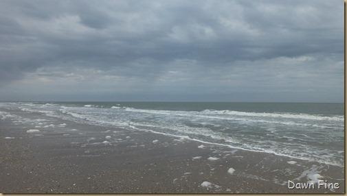Edisto Beach State Park_012