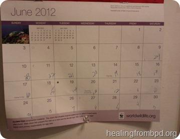 BPD Identity Disturbance Calendar