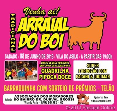 ARRAIAL DO BOI-cartaz