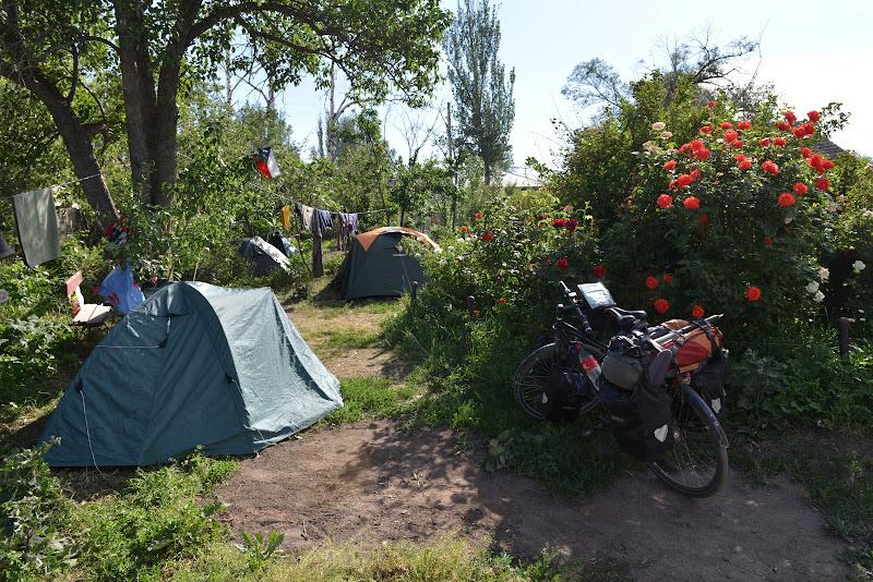 Si ultimul loc de cort in gradina guesthouse-ului Yak.