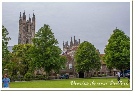 Canterbury-51