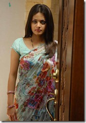 sneha ullal in_ saree