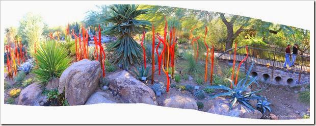 Succulents And More Arizona Day 6 Phoenix Cosanti Desert Botanical Garden