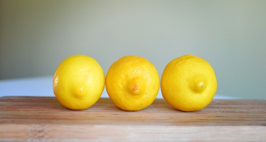 lemons in a row amy renea a anestforallseasons