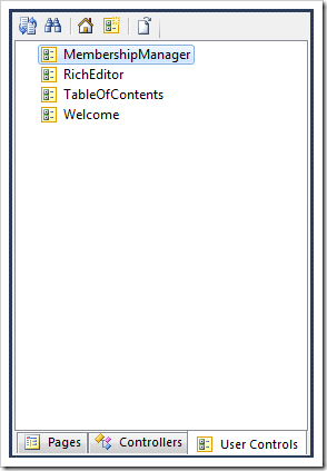 User Controls tab in the Project Explorer.