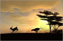 Gazelle Hunt -