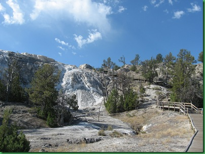 Mammoth Hot Springs Terraces (204)