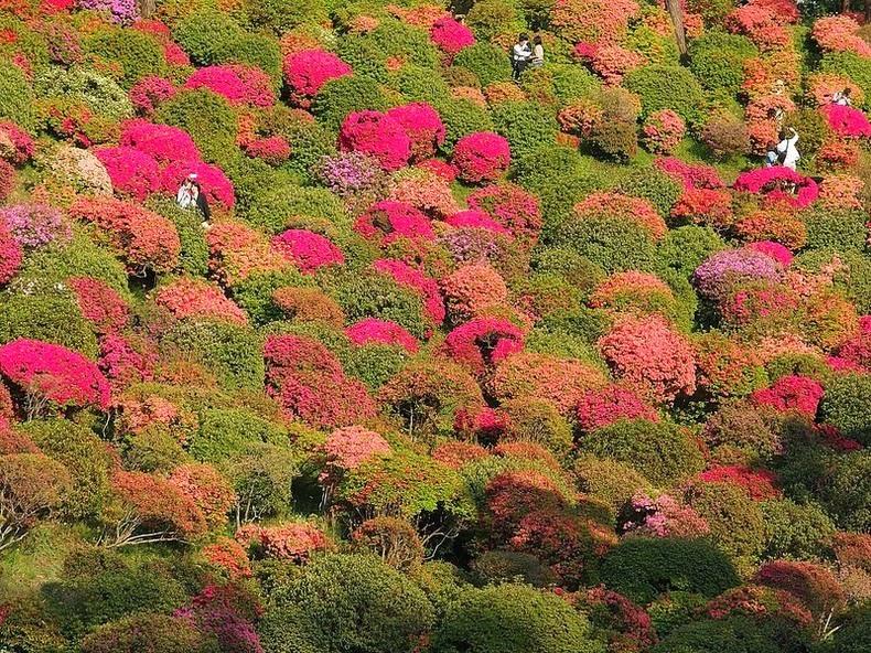 shiofune-kannon-ji-11