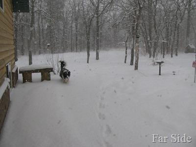 snow Feb 26