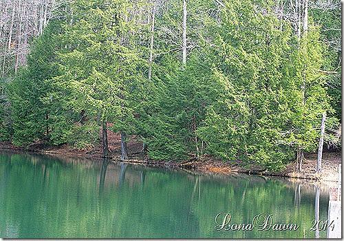 Rose Lake Spring2014