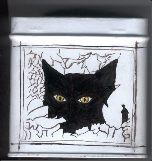 scatola gatto 1