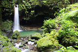Emerald Pool - Roseau, Dominica