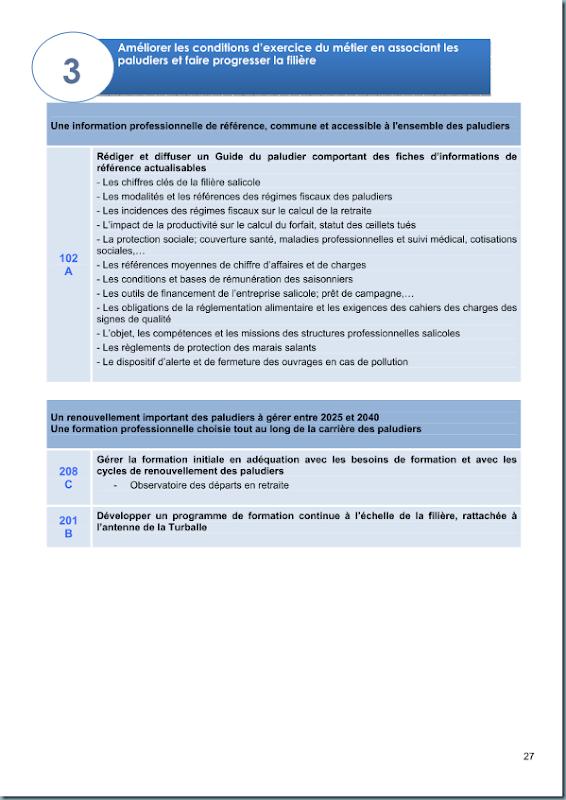 diagnostic_salicole_ca44_2011_page_028