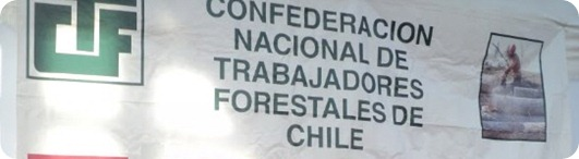 forestal chile