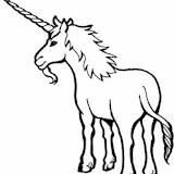 unicorn-2a.jpg