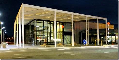 Library_at_night