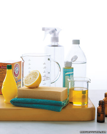 Staying on top of monthly chores keeps a household in pristine condition. Use our checklist as a guide to organize your monthly cleanup. http://images.marthastewart.com/images/content/web/pdfs/2009Q3/ms_checklist_monthlyclean.pdf