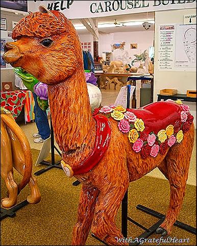 Carousel Llama