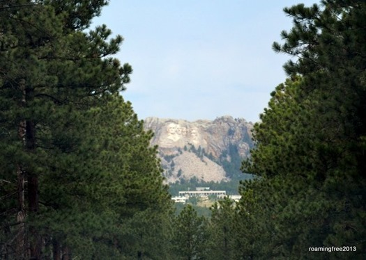 Mt. Rushmore in the distance