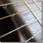 Guitar Tear Drop