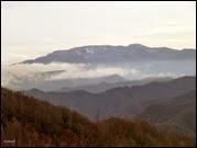 Monti Falco e Falterona