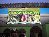Taman Eden at the foot of Pangulubao (Daniel Quinn, August 2011)