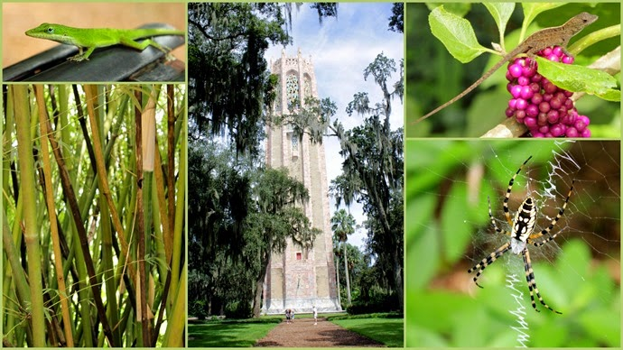 Bok Tower1
