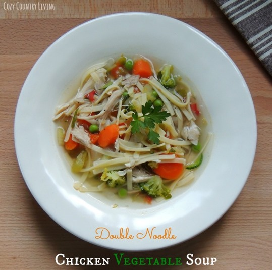 Double-Noodle-Chicken-Vegetable-Soup