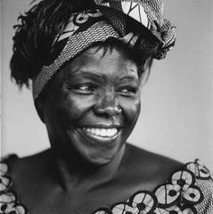 Prof Wangari Matthai - Winner 20_web