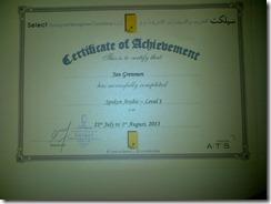 Dubai-20130801-00360