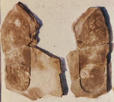 meister_footprint