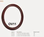 OV11.JPG