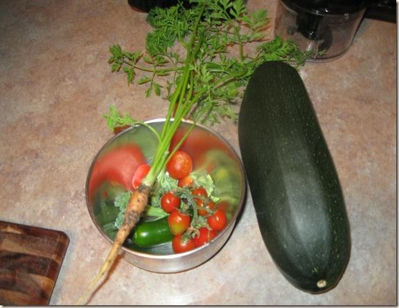 Garden July 24 (3)