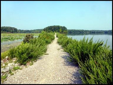05 - Crossing Honker Dam