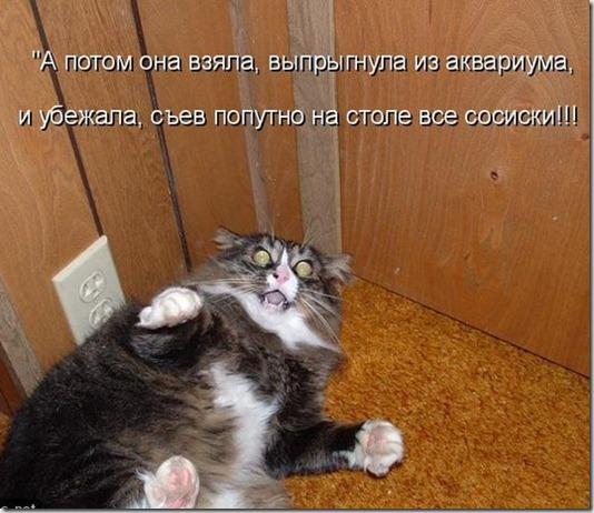 kotomatrix_042