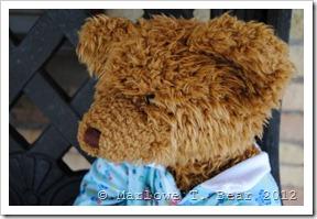 tn_2012-03-11 Foster (5)