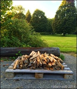 Firewood 09182014