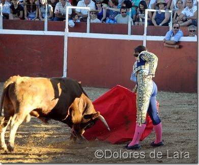 ©Dolores de Lara (32)