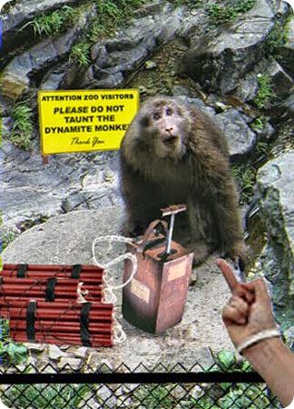 Dynamite_monkey