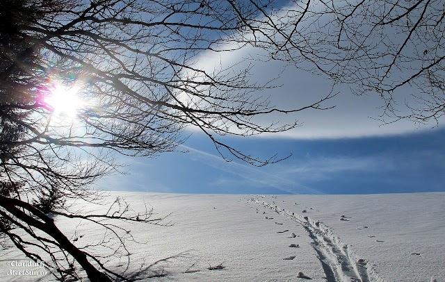Baiului-schi-de-tura-1177.jpg