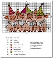 cerdos conountodecruz.blogspot (1)