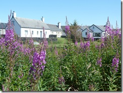 easdale cottages4