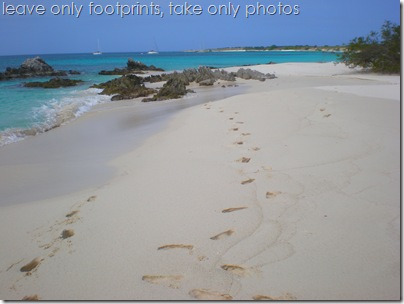 Take only photos, leave only footprints, Blanquilla