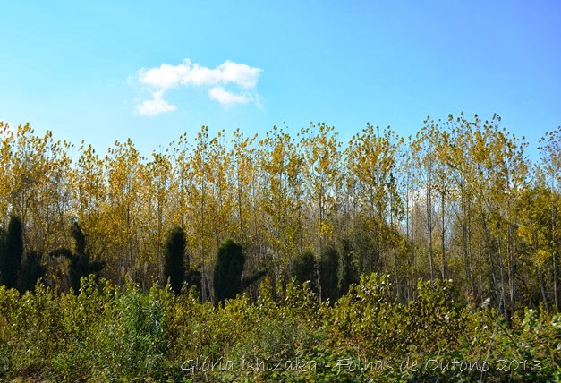 Glória Ishizaka - Outono 2013 - 28