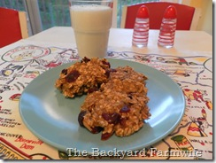 breakfast cookies - The Backyard Farmwife