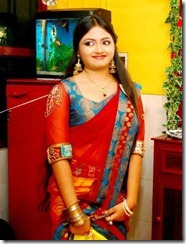 shalin_hot_spicy_pic_in_saree