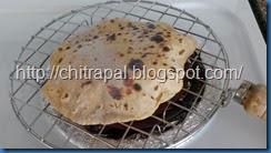 Chitra Pal Mesh 4